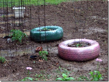 tires and garden 009