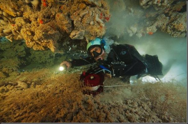 Lindas imagens de cavernas nas Bahamas (11)