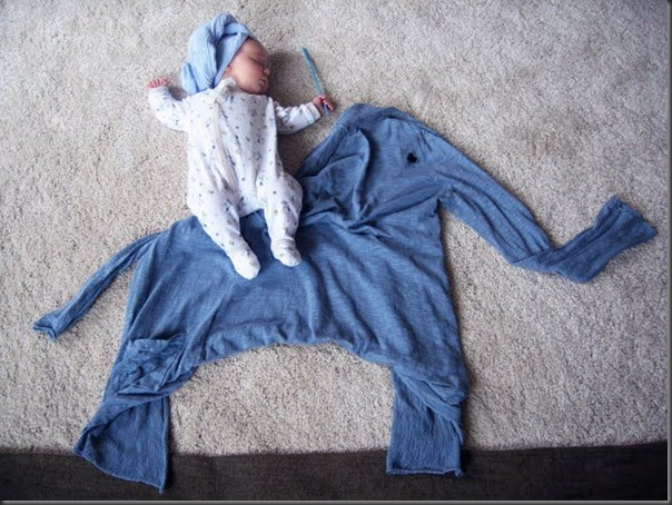 Lindas imagens de bebezinhos (16)