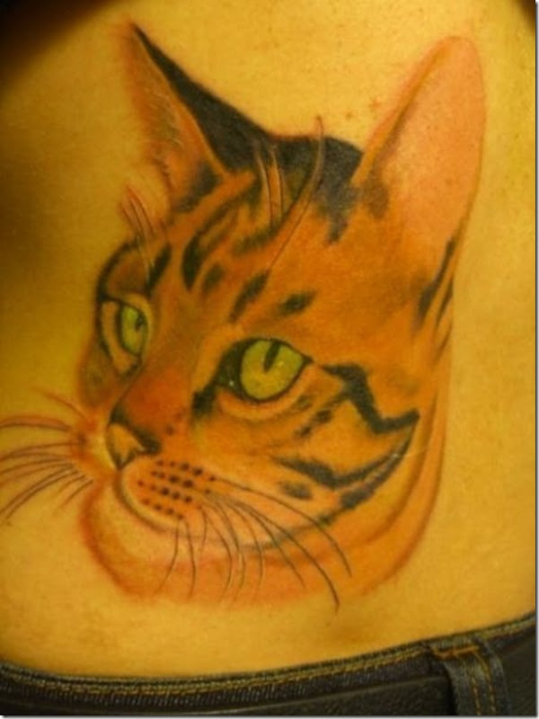 Tatuagem de gatos (1)