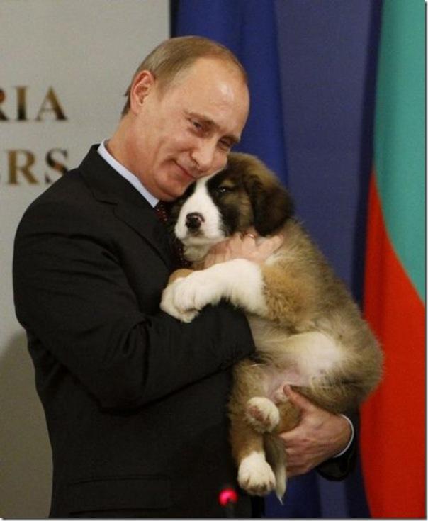 Vladimir Putin e o seu amor pelos animais (22)