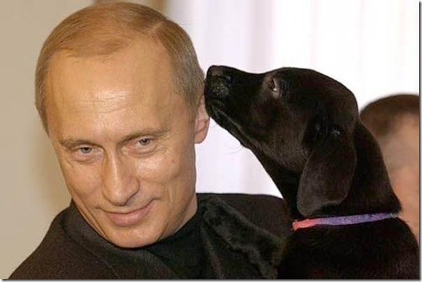Vladimir Putin e o seu amor pelos animais (2)