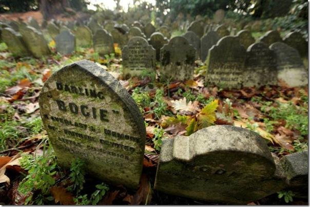 Cemitérios de animais de estimação em Londres (6)