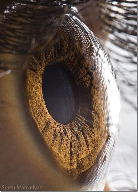 Fotos macro de olhos humanos