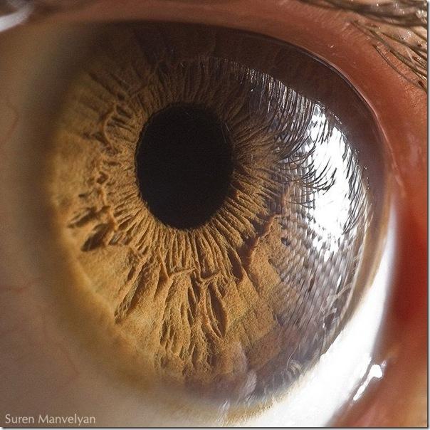 Fotos macro de olhos humanos (9)