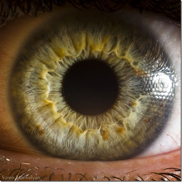 Fotos macro de olhos humanos (3)