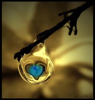 gota de amor