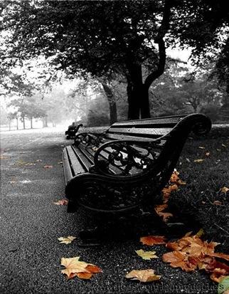 caminhos da solidão