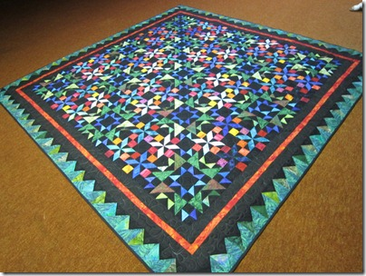 The Long Winter Quilt Feb 2011 002
