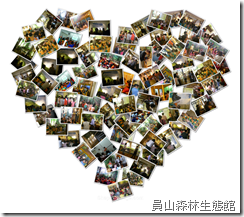 LOVE YS1