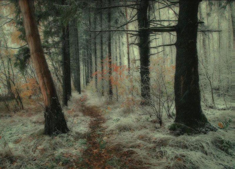 รูปภาพ แบ่งปัน..ธรรมชาติแสนสวย