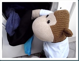 Monkey Loading the Tumble Dryer