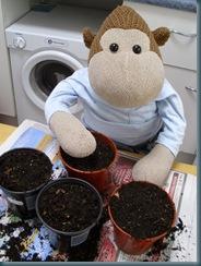Preparing pots