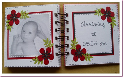 Gingham Mini Baby Book 5