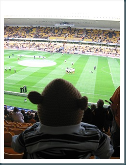 Monkey at Wolves Match