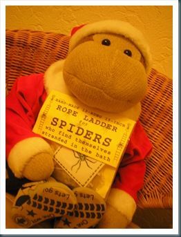 monkey with spider ladder