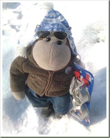 Monkey Snowboard