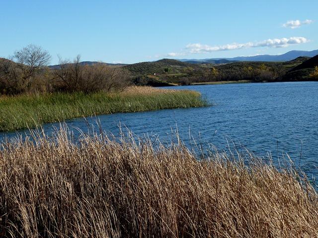 Job bulletin for Lake skinner fishing report