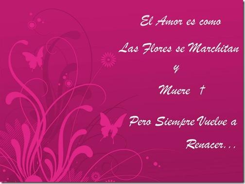 Amor Primavera-106119_1024