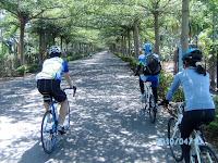 潮州-綠色隧道 Photo