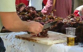 cortando erizos