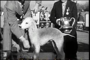 1948_