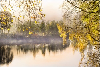 misty_glen_affric_800