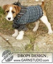 dog_hoodie_drops