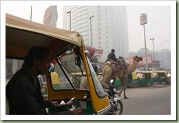 Delhi blog_03