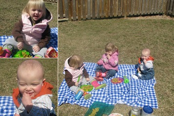 View 2009 Picnic Fun