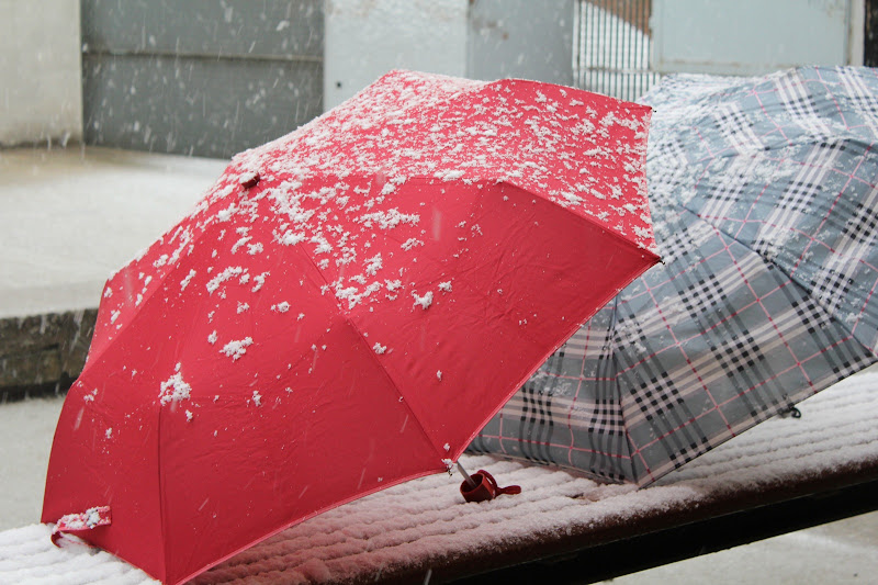 Paraigües nevat III