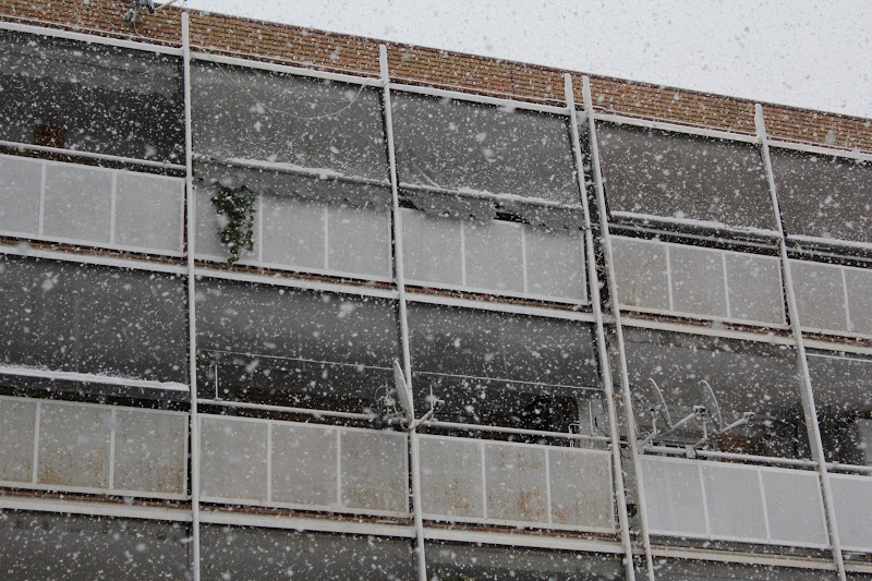 Vel nevat davant la façana