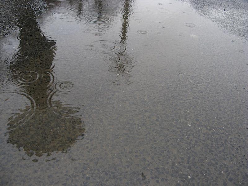 Silueta amb paraigües reflexada al bassal