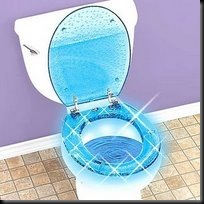 cordless lighted toilet seat TG