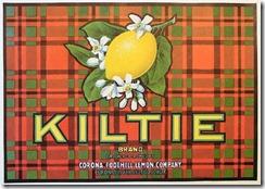 vintage-stickers-kiltie-brand-corona-foothill-lemon-company1