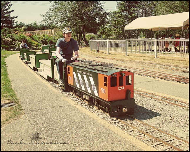 miniature-train