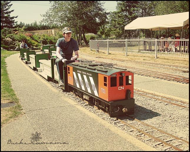 miniature-train