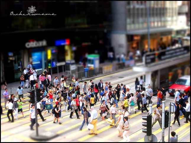 Tilt-Shift-(crossing)
