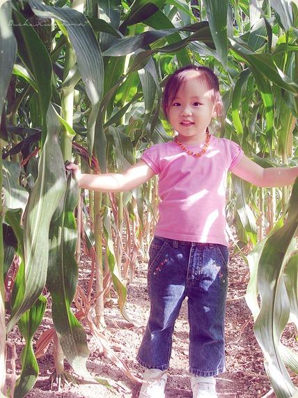 zoe-corn2
