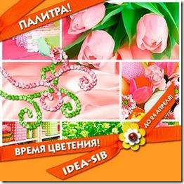 Idea_sib_KONKURS-12