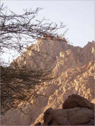 Sharm6