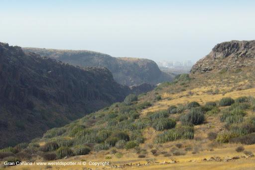 Gran Canaria 2010 (15).JPG