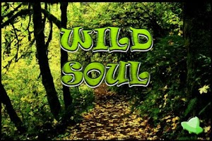 Screenshot of Wild Soul