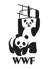 bears,wwf,creative,logo,chair,panda,bears-a8f69bfd85b408c3b9215b7f5f59f31c_h
