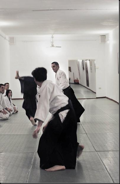 Ruta in action
