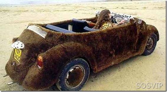 Fusca Volkswagen (17)