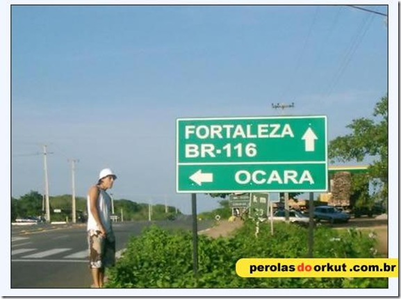 Perolas Orkut (5)
