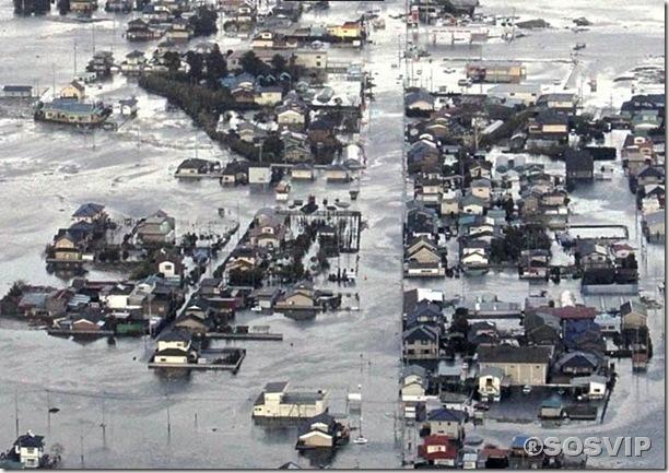 Tsunami Japao Terremoto.jpg (1)