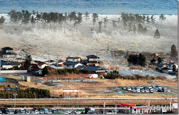 Tsunami Japao Terremoto.jpg (4)