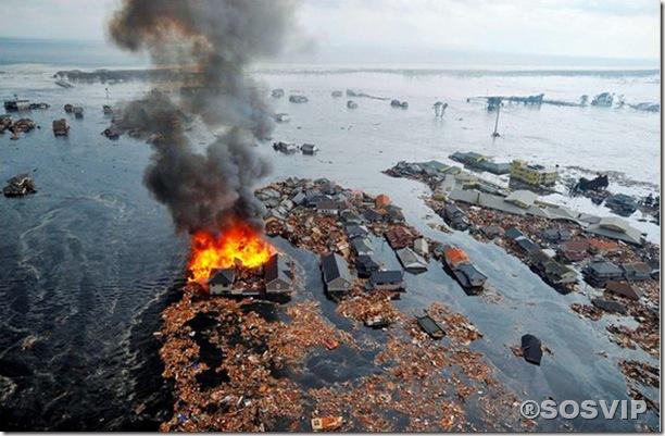 Tsunami Japao Terremoto.jpg (6)